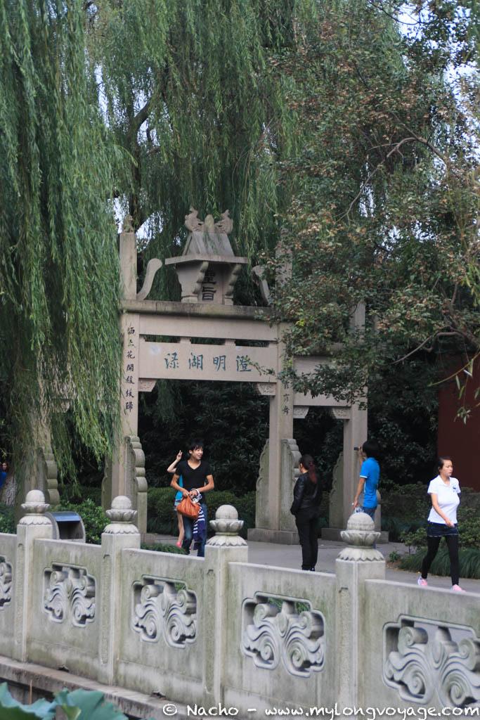 Hangzhou 42 38665536