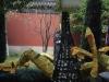 Hangzhou 44 38716416