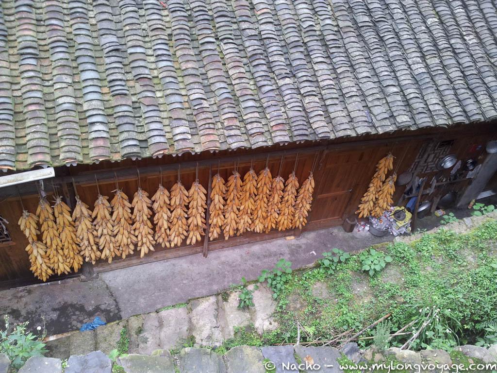 Guiyang and Guizhou 31 161405