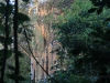 Sunset in Angkor 11 40058048