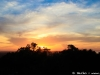 Sunset in Angkor 24 40466816