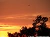 Sunset in Angkor 30 40618240