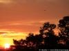 Sunset in Angkor 31 40626560