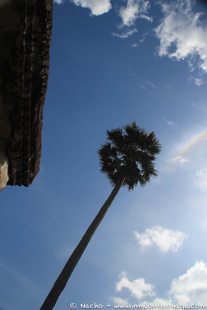 Angkor Wat & Bayon 38 42012800