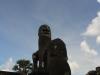 Angkor Wat & Bayon 14 41584896