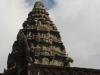 Angkor Wat & Bayon 34 41950784