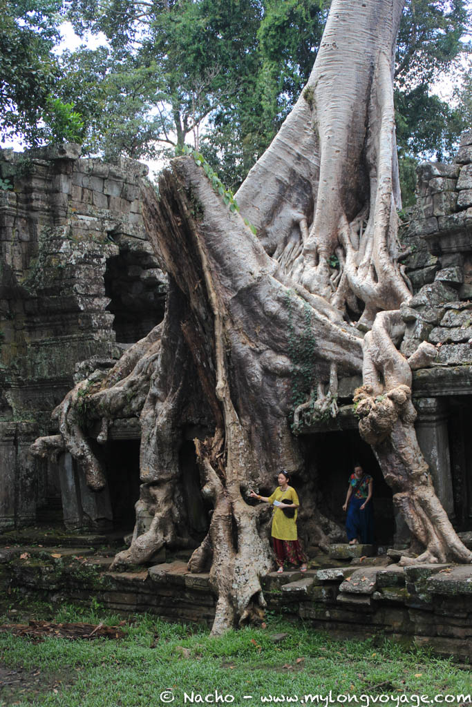 Temples of Angkor 77 44643328