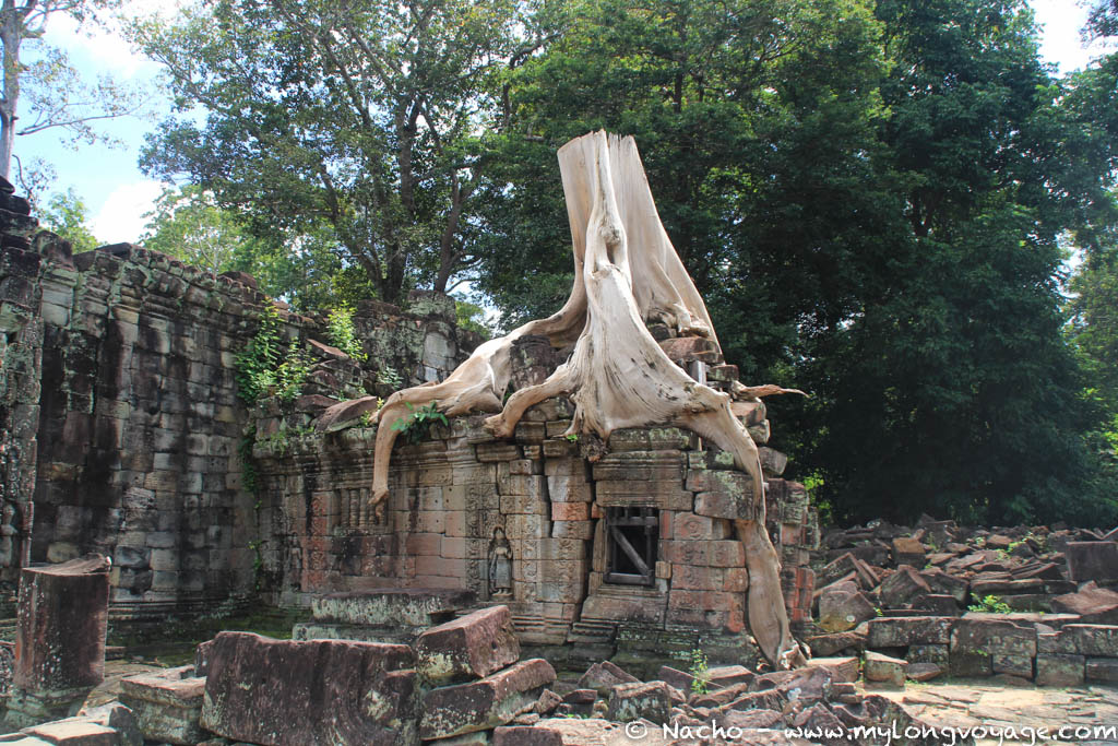 Temples of Angkor 83 44782144