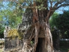 Temples of Angkor 44 43653888