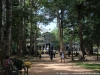 Temples of Angkor 72 44548928