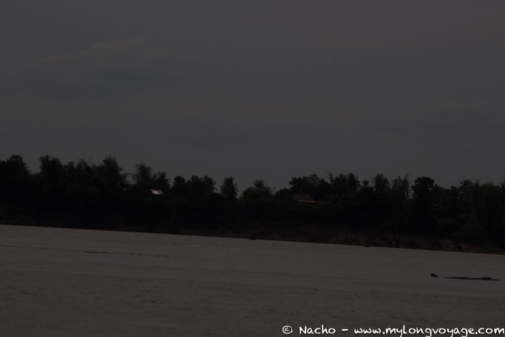 Kratie sunsets & dolphin spotting 25 49539456