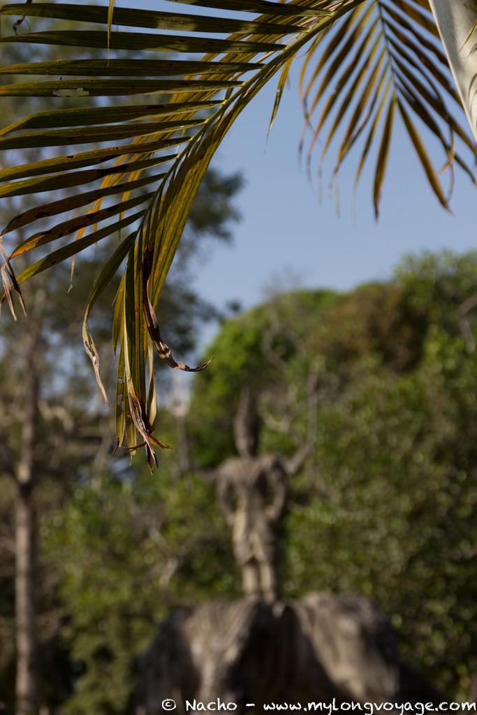Buddha park & photo op 36 3514