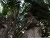 Buddha park & photo op 22 3490
