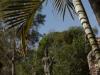 Buddha park & photo op 37 3515