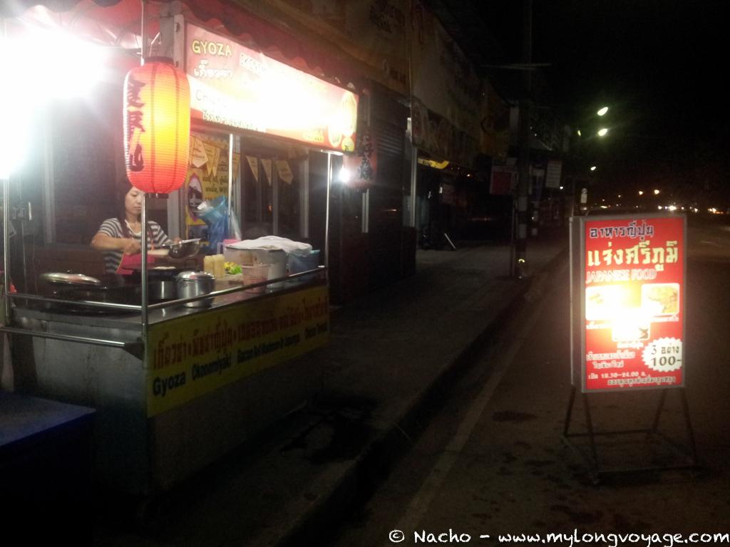 Chiang Mai and the Mae Hong Son Hook 02 213230