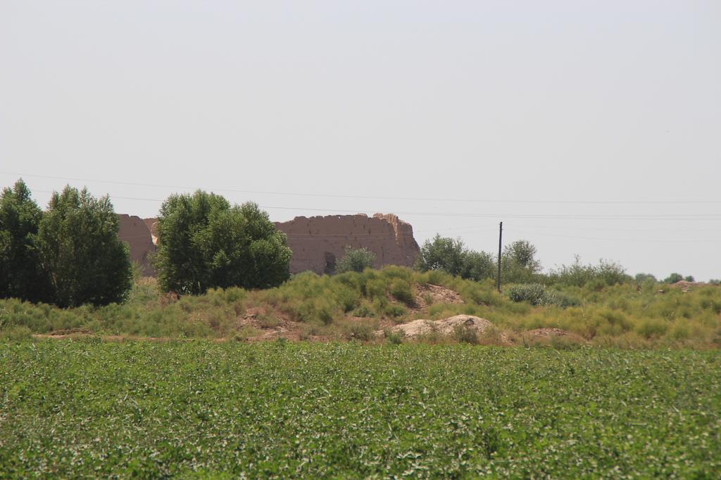 Desert roads of Uzbekistan 27 1195