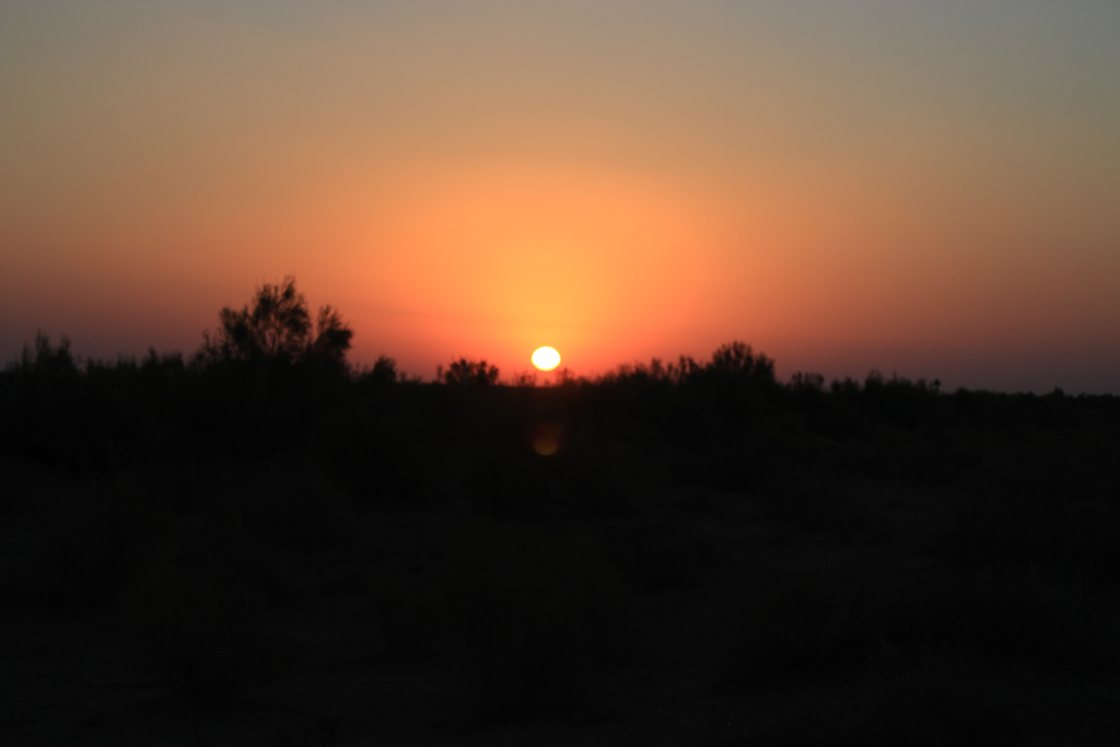 Desert roads of Uzbekistan 40 1330