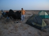Desert roads of Uzbekistan 06 1162