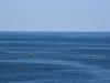 The Black Sea road 065 0958