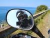 The Black Sea road 070 0963